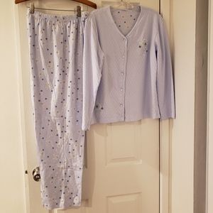 NWOT Secret Treasures Baby Blue Sleepwear Set